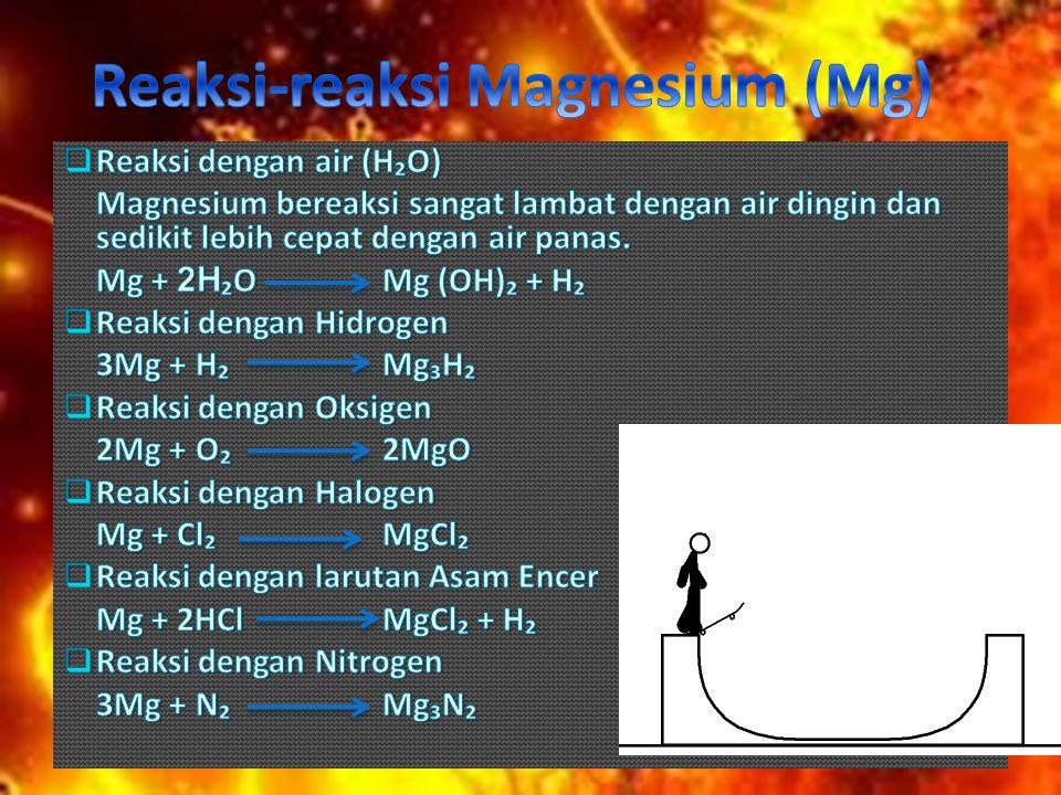 Reaksi-reaksi Magnesium (Mg)