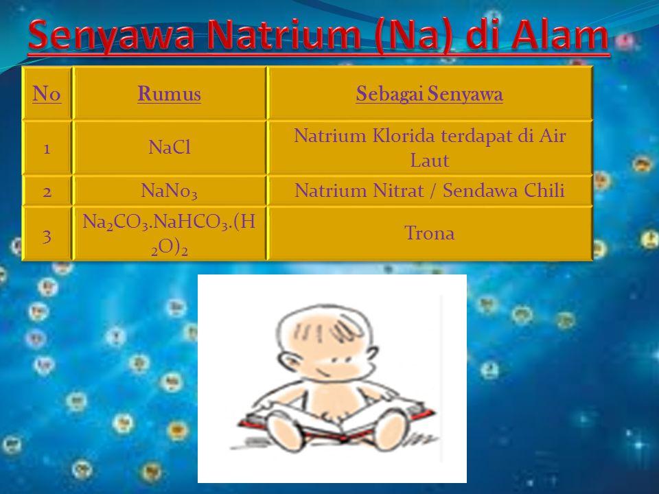 Senyawa Natrium (Na) di Alam