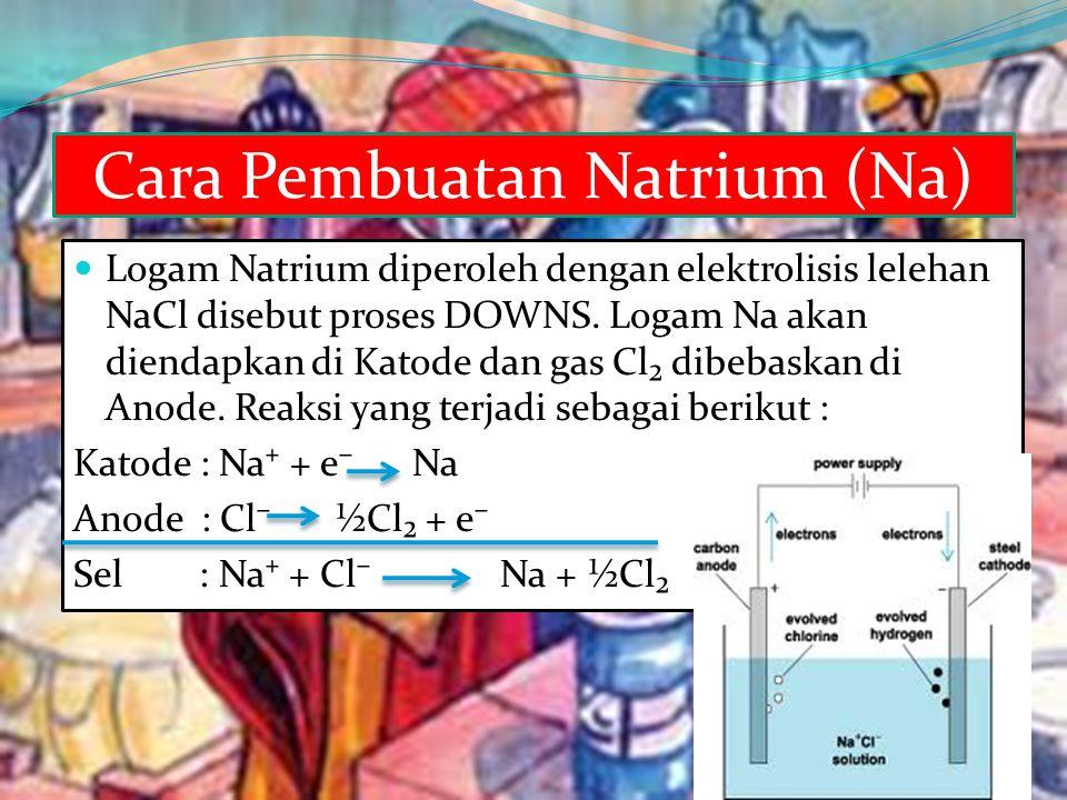 Cara Pembuatan Natrium (Na)