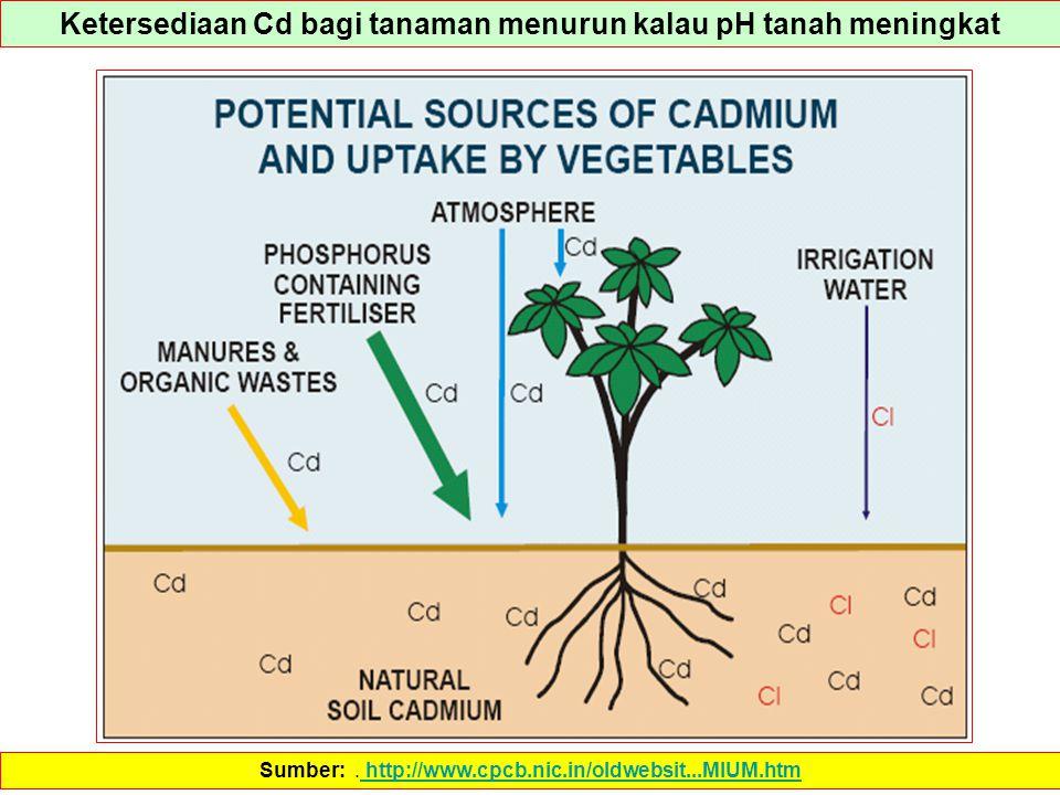 Ketersediaan Cd bagi tanaman menurun kalau pH tanah meningkat