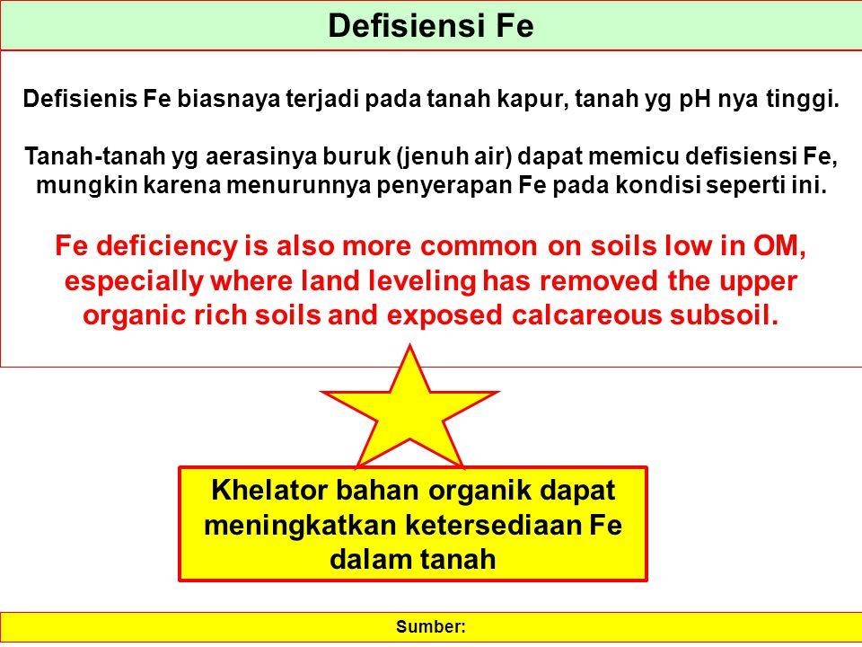 Khelator bahan organik dapat meningkatkan ketersediaan Fe dalam tanah