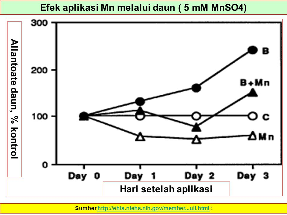 Efek aplikasi Mn melalui daun ( 5 mM MnSO4)