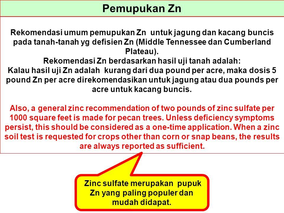Pemupukan Zn Rekomendasi umum pemupukan Zn untuk jagung dan kacang buncis pada tanah-tanah yg defisien Zn (Middle Tennessee dan Cumberland Plateau).