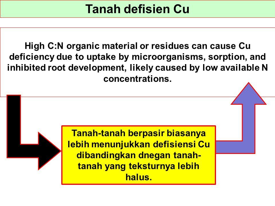 Tanah defisien Cu