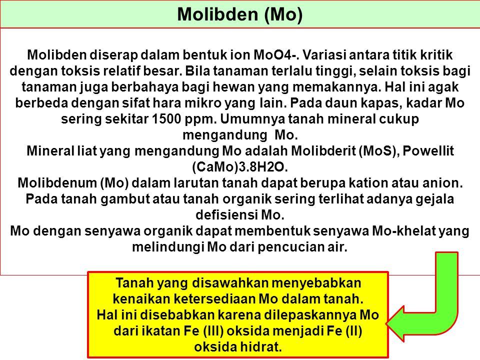 Molibden (Mo)