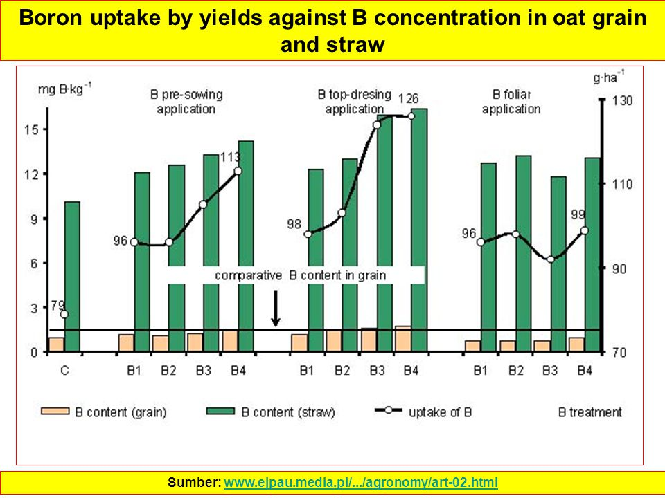 Boron uptake by yields against B concentration in oat grain and straw