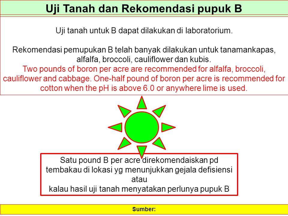 Uji Tanah dan Rekomendasi pupuk B