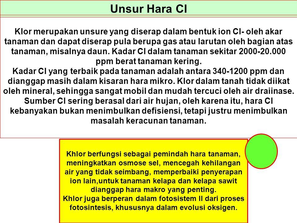 Unsur Hara Cl