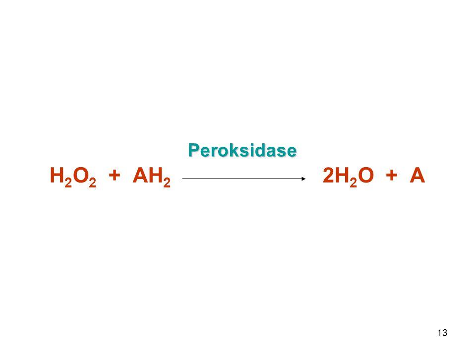 Peroksidase H2O2 + AH2 2H2O + A