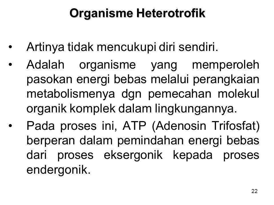 Organisme Heterotrofik