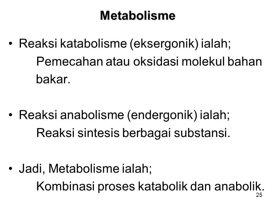 Metabolisme Reaksi katabolisme (eksergonik) ialah; Pemecahan atau oksidasi molekul bahan. bakar. Reaksi anabolisme (endergonik) ialah;
