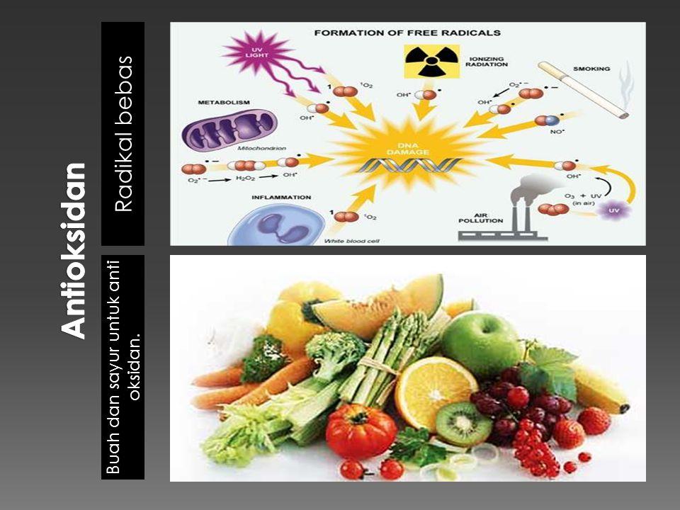 Buah dan sayur untuk anti oksidan.