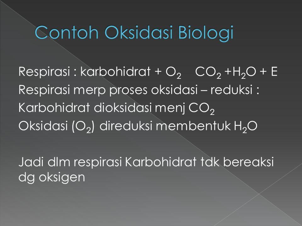 Contoh Oksidasi Biologi