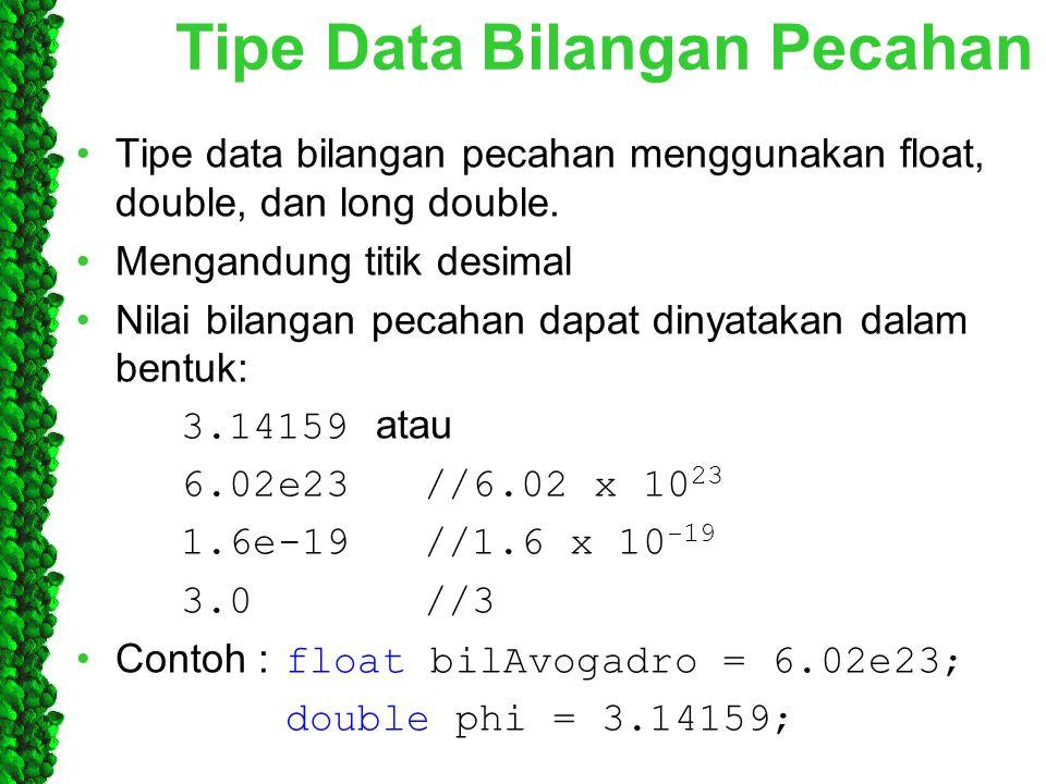 Tipe Data Bilangan Pecahan