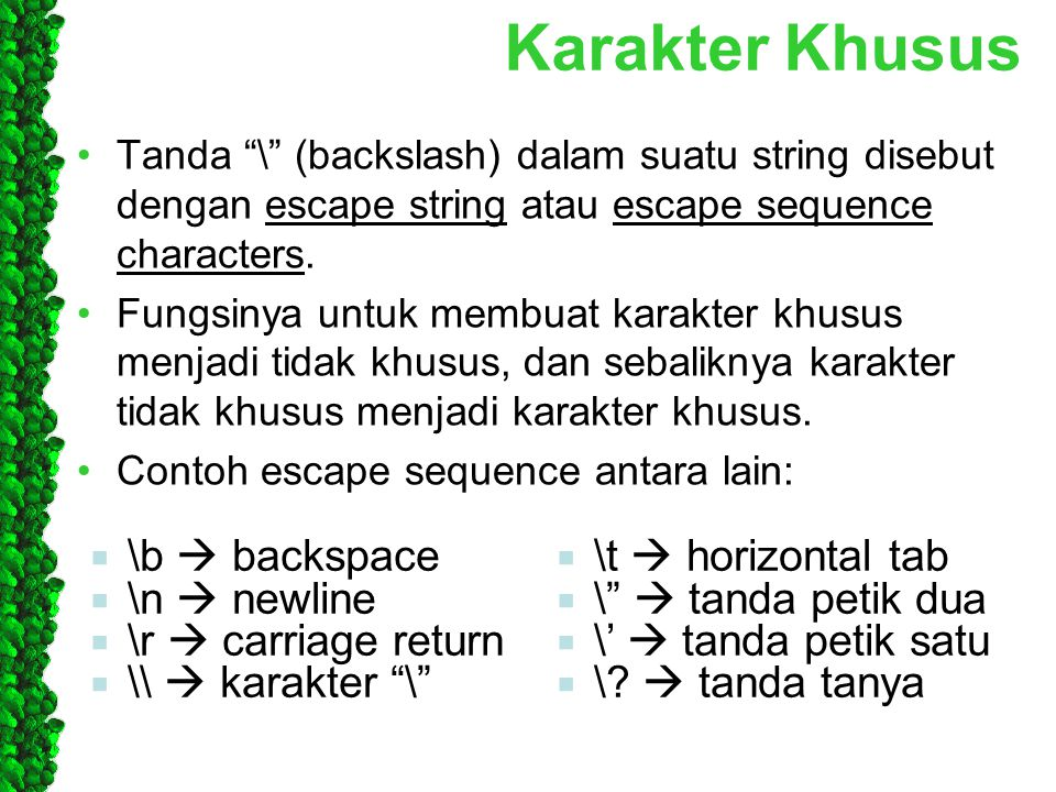Karakter Khusus \b  backspace \t  horizontal tab \n  newline