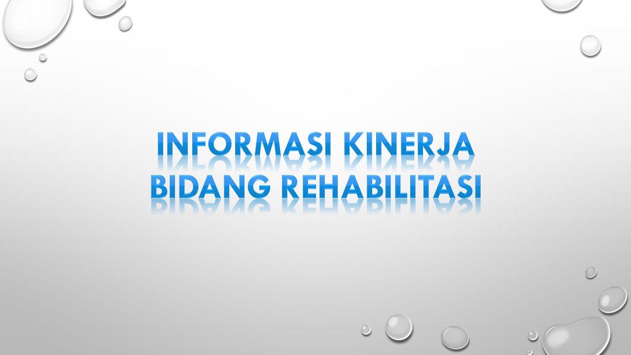 Informasi kinerja Bidang rehabilitasi