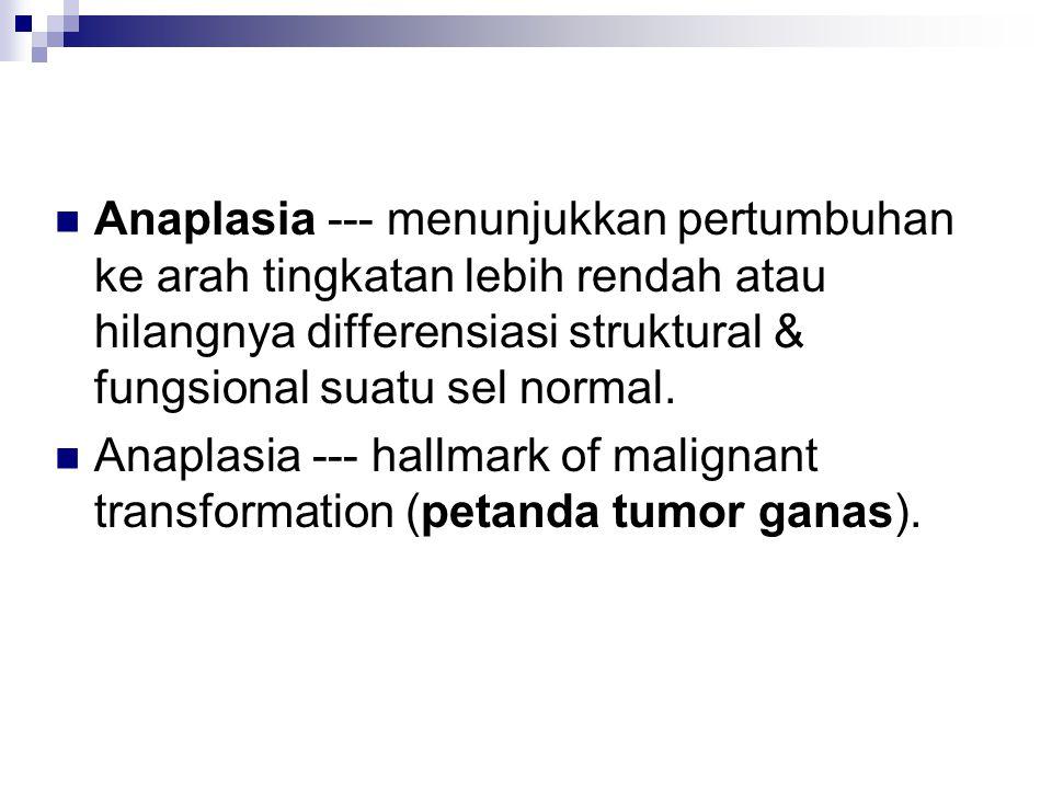 Anaplasia --- menunjukkan pertumbuhan ke arah tingkatan lebih rendah atau hilangnya differensiasi struktural & fungsional suatu sel normal.