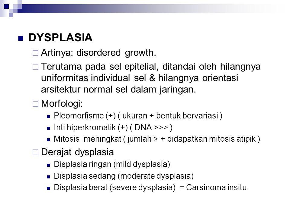 DYSPLASIA Artinya: disordered growth.