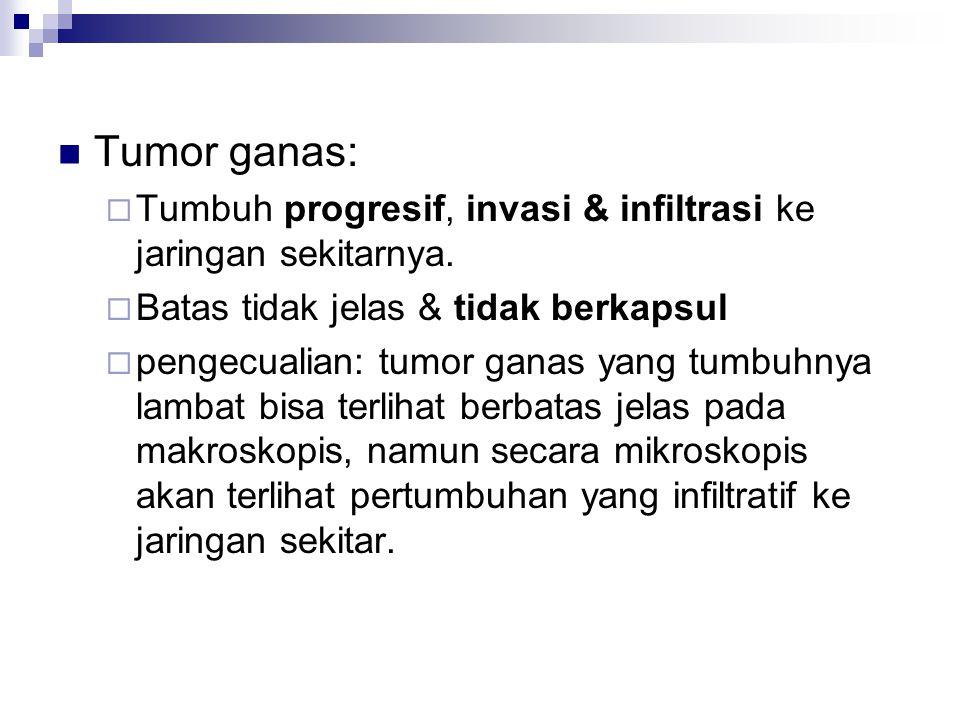 Tumor ganas: Tumbuh progresif, invasi & infiltrasi ke jaringan sekitarnya. Batas tidak jelas & tidak berkapsul.