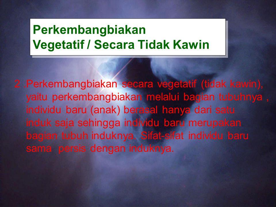 Perkembangbiakan Vegetatif / Secara Tidak Kawin