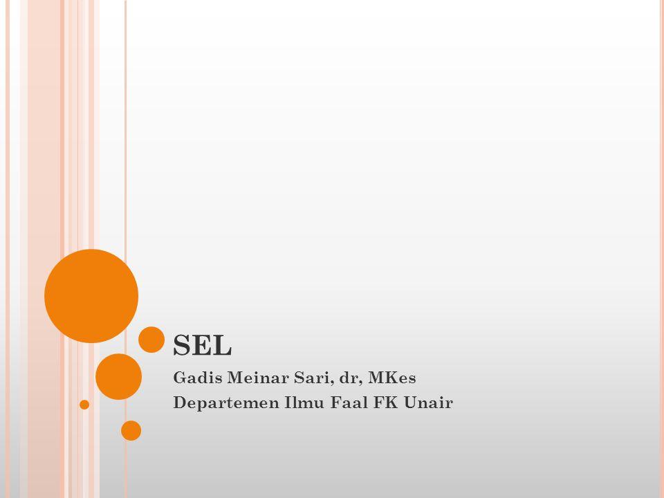 Gadis Meinar Sari, dr, MKes Departemen Ilmu Faal FK Unair