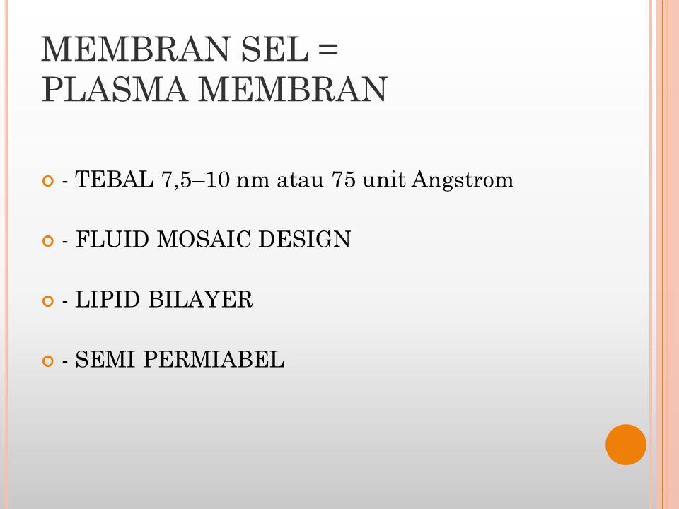 MEMBRAN SEL = PLASMA MEMBRAN
