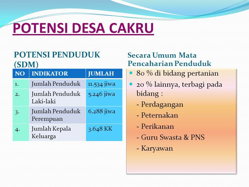POTENSI DESA CAKRU POTENSI PENDUDUK (SDM)