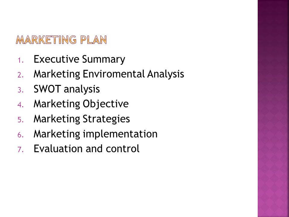 MARKETING PLAN Executive Summary Marketing Enviromental Analysis