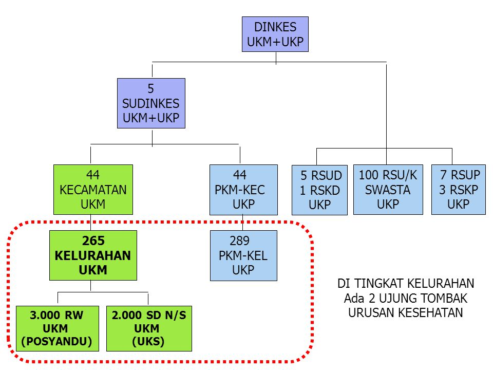 DINKES UKM+UKP 5 SUDINKES UKM+UKP 44 KECAMATAN UKM 44 PKM-KEC UKP