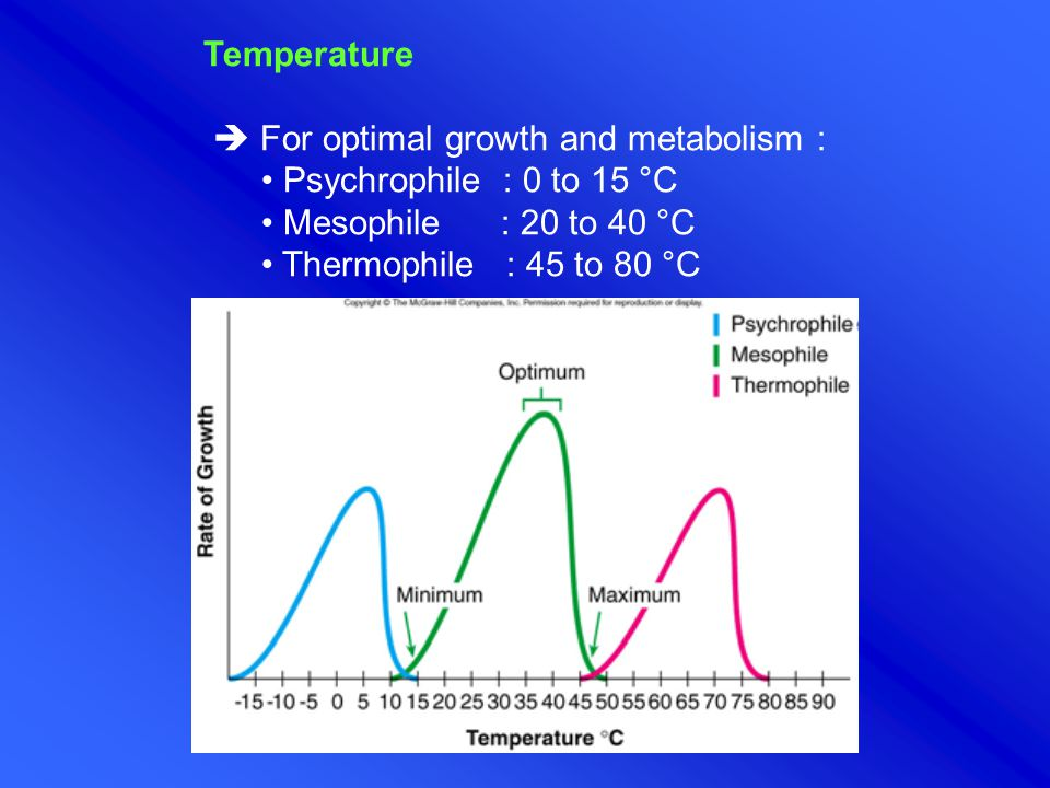 Temperature  For optimal growth and metabolism : • Psychrophile : 0 to 15 °C. • Mesophile : 20 to 40 °C.