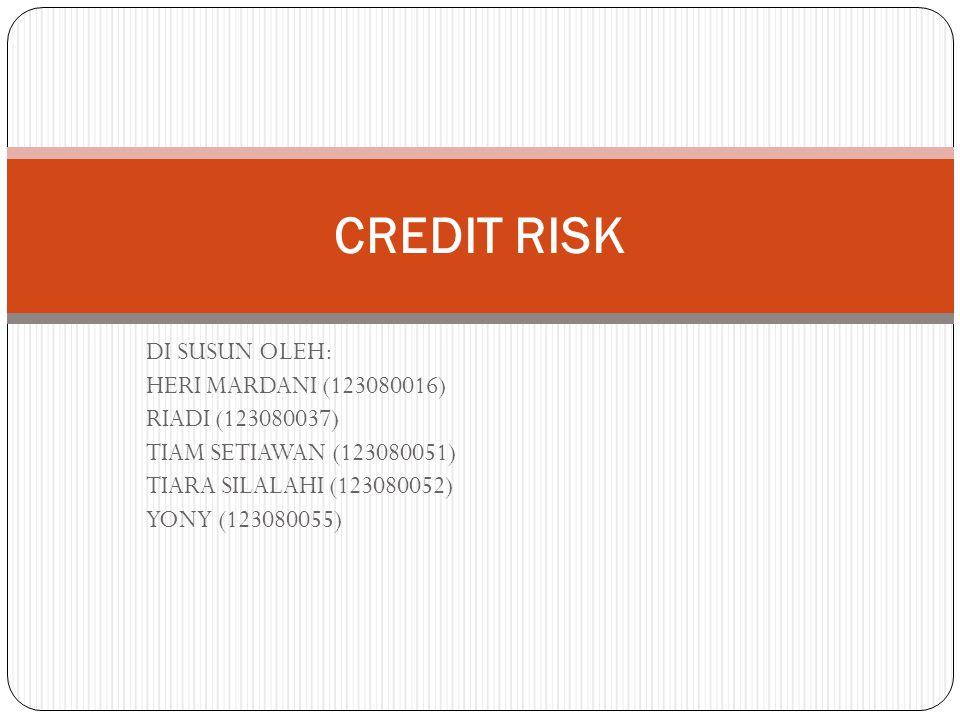 CREDIT RISK DI SUSUN OLEH: HERI MARDANI (123080016) RIADI (123080037)