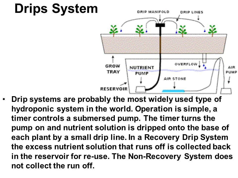 Drips System