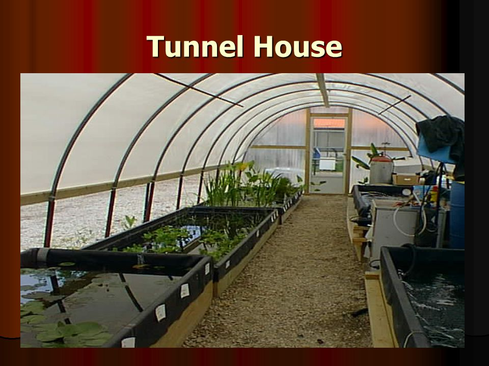 Tunnel House