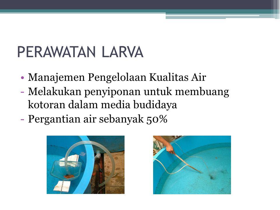 PERAWATAN LARVA Manajemen Pengelolaan Kualitas Air