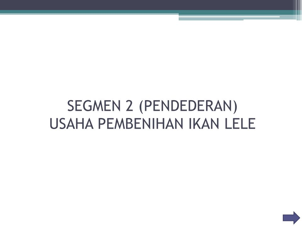 SEGMEN 2 (PENDEDERAN) USAHA PEMBENIHAN IKAN LELE