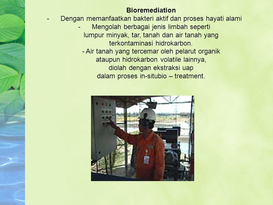 Dengan memanfaatkan bakteri aktif dan proses hayati alami