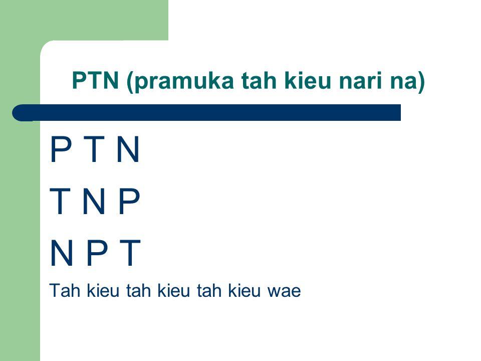 PTN (pramuka tah kieu nari na)