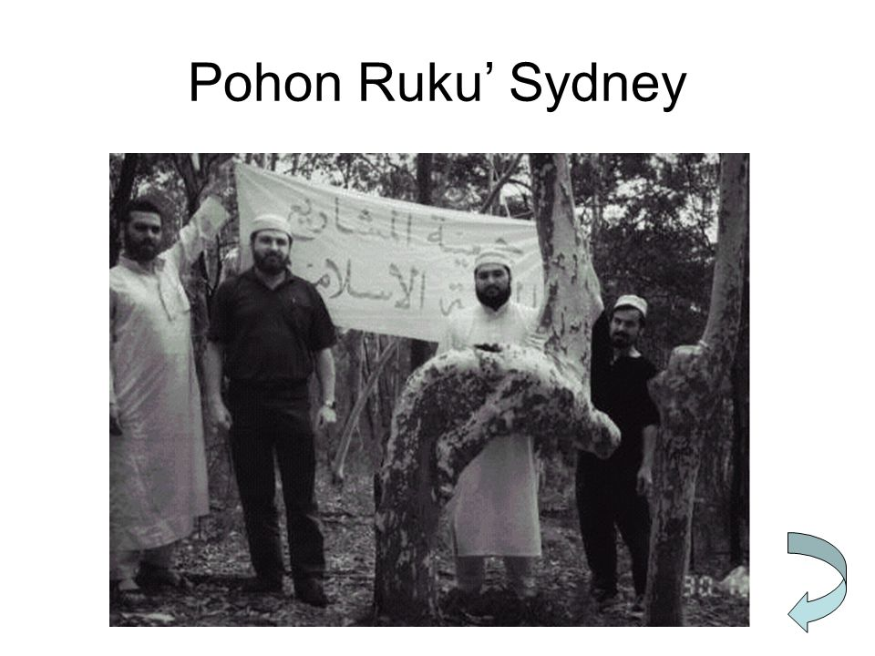 Pohon Ruku' Sydney