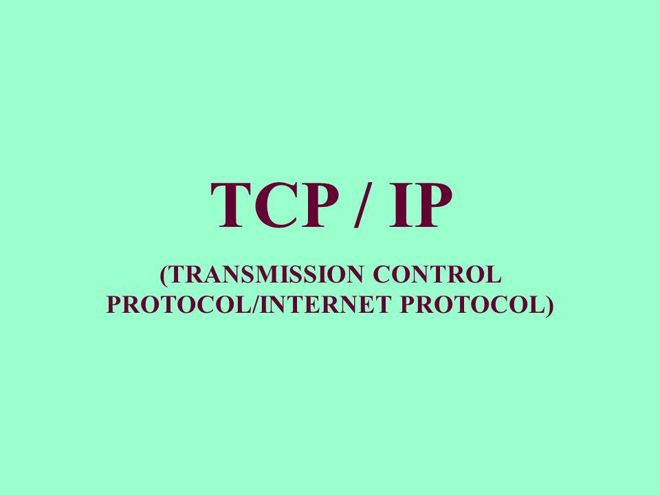 (TRANSMISSION CONTROL PROTOCOL/INTERNET PROTOCOL)
