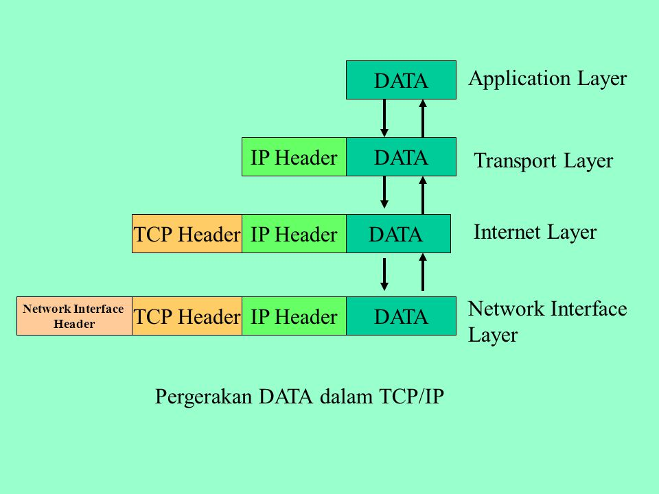 Network Interface Layer TCP Header IP Header DATA