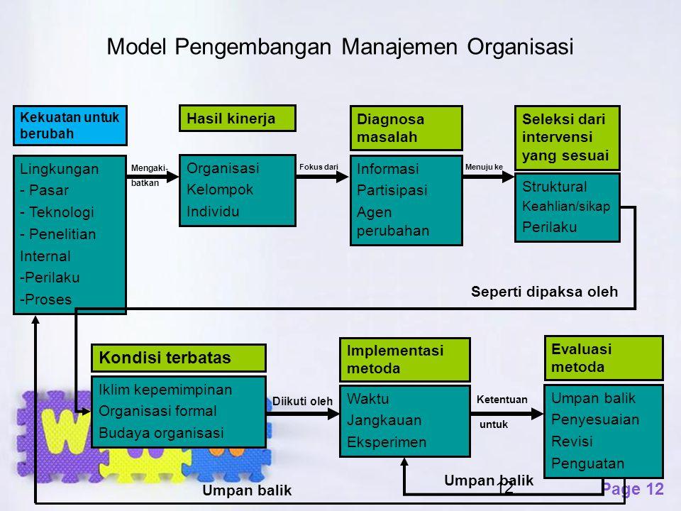 Model Pengembangan Manajemen Organisasi