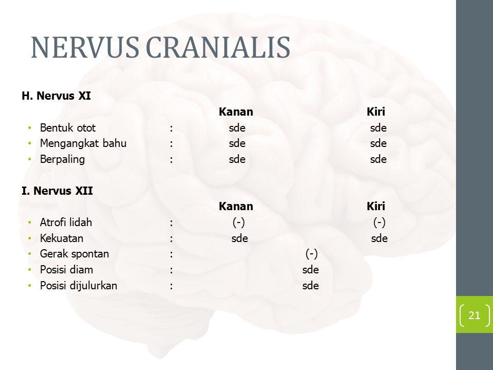 NERVUS CRANIALIS H. Nervus XI Kanan Kiri Bentuk otot : sde sde