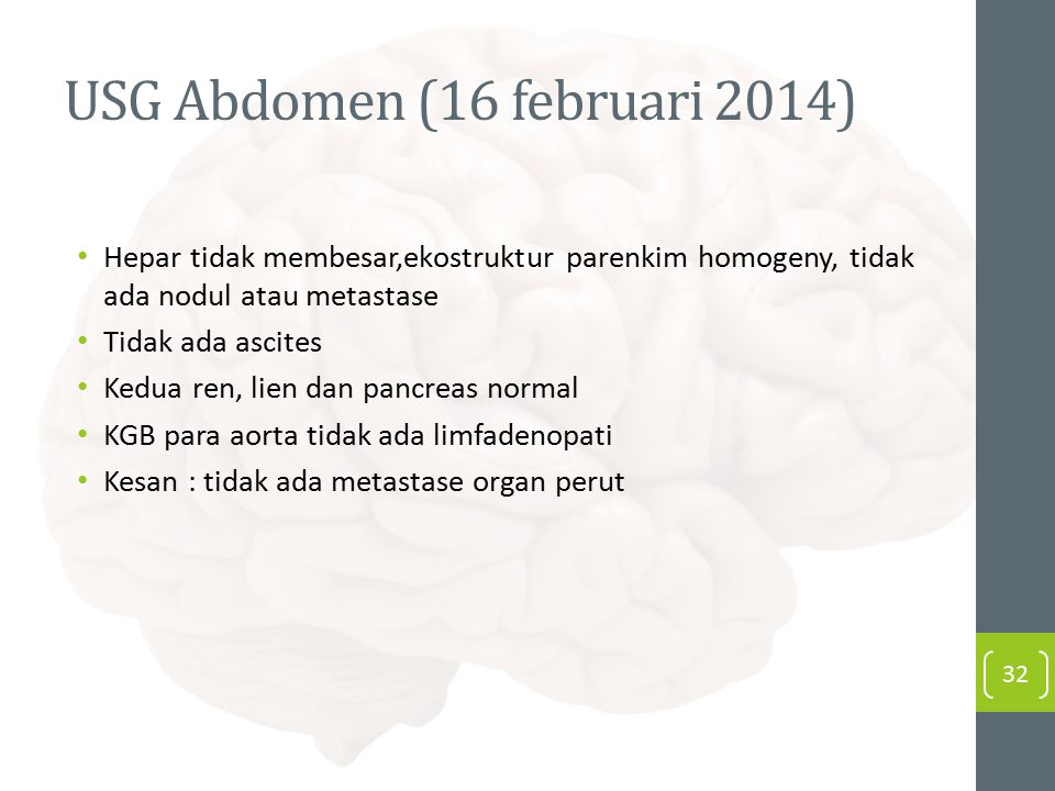 USG Abdomen (16 februari 2014)