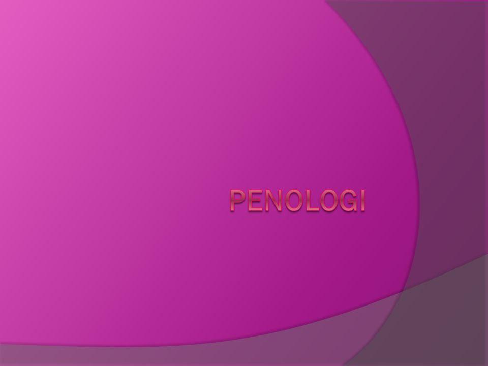 PENOLOGI