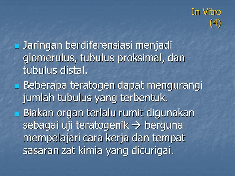 Beberapa teratogen dapat mengurangi jumlah tubulus yang terbentuk.