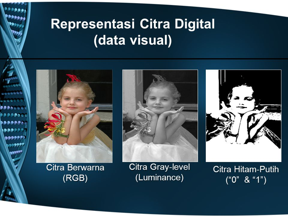 Representasi Citra Digital (data visual)