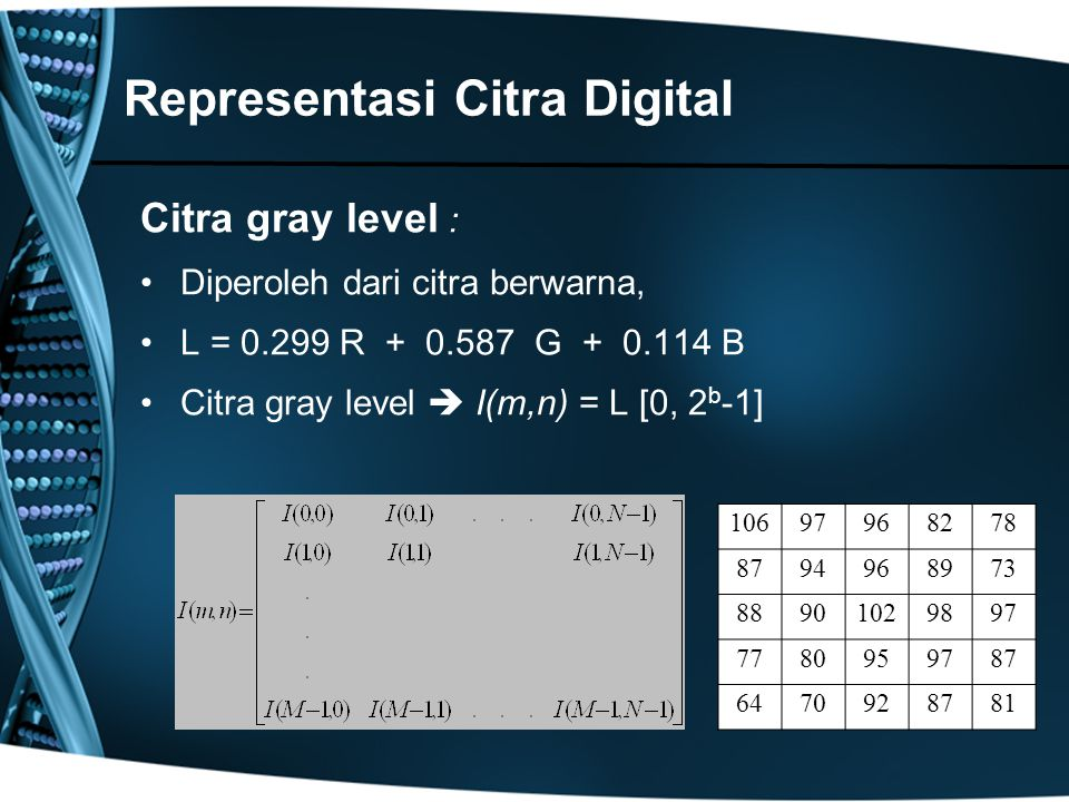 Representasi Citra Digital