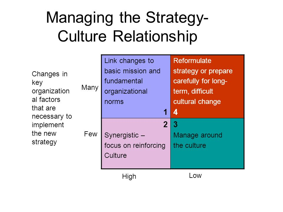 Managing the Strategy- Culture Relationship