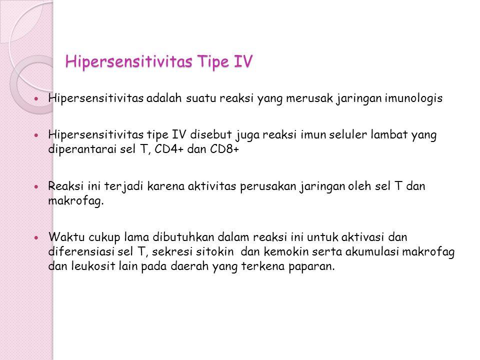 Hipersensitivitas Tipe IV