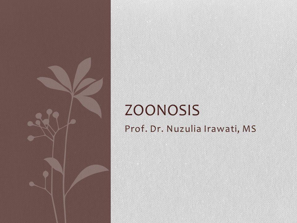 Prof. Dr. Nuzulia Irawati, MS